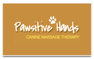 Pawsitive Hands